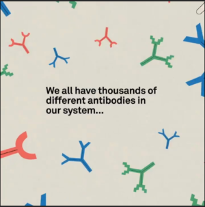 How are pathogens and antibodies connected?