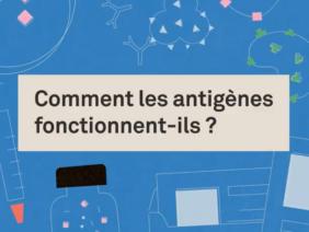 Et si on découvrait ce qu'est un antigène ?